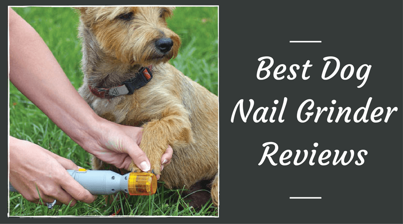 Best-Dog-Nail-Grinder-Reviews