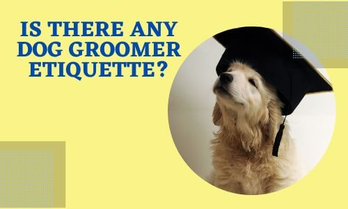 Is there any dog groomer etiquette_
